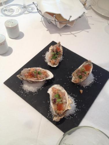 tartar ostras