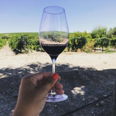 vino y viñas